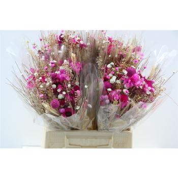 Dried flower bouquet Fantasia cerise