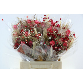 Dried flower bouquet Fantasia Red