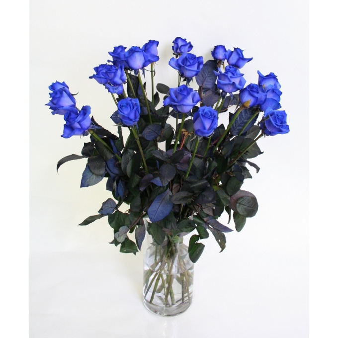 Bouquet of Ice Blue Roses intermediate heads