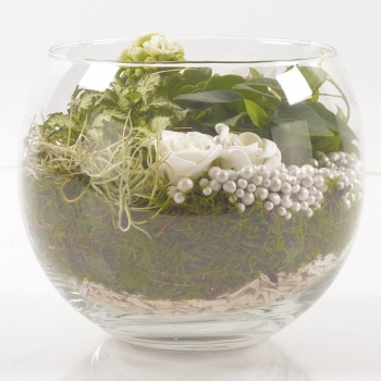 Plant composition in sphere glass