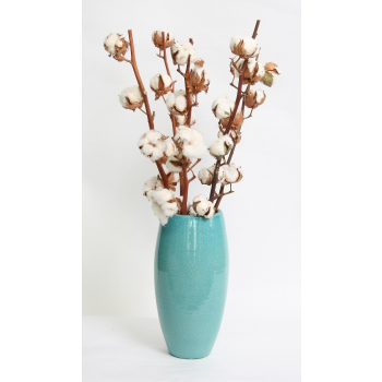 5 Cotton stems with 7 balls per stem in a fashionable vase