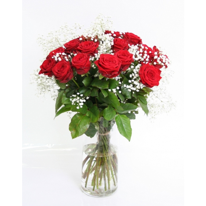 Bouquet of 20 red Roses big heads with Gypsophile