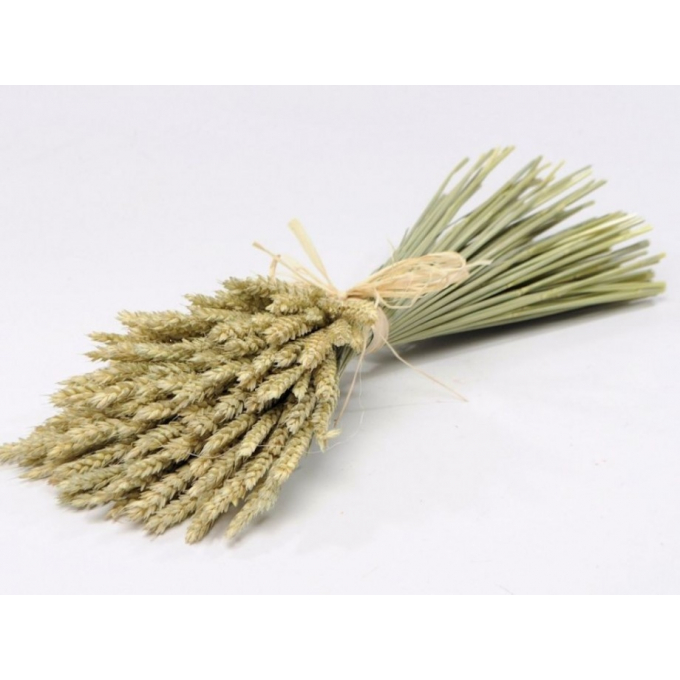 Bouquet of dried wheat flat