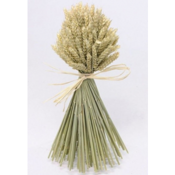 Bouquet of dried wheat round