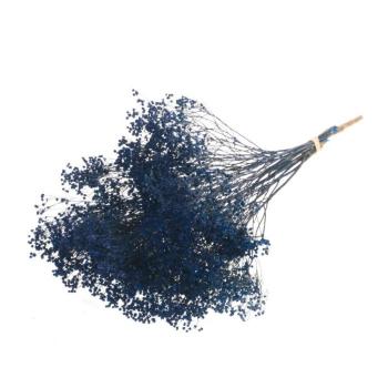 Broom bloom blue dried (100 gr)