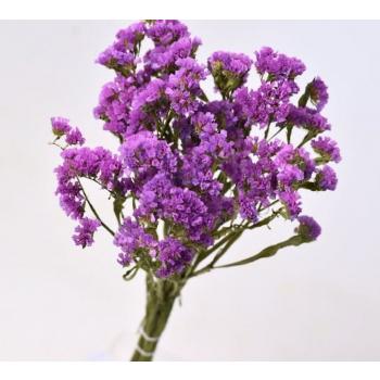 Lilac dried Statice