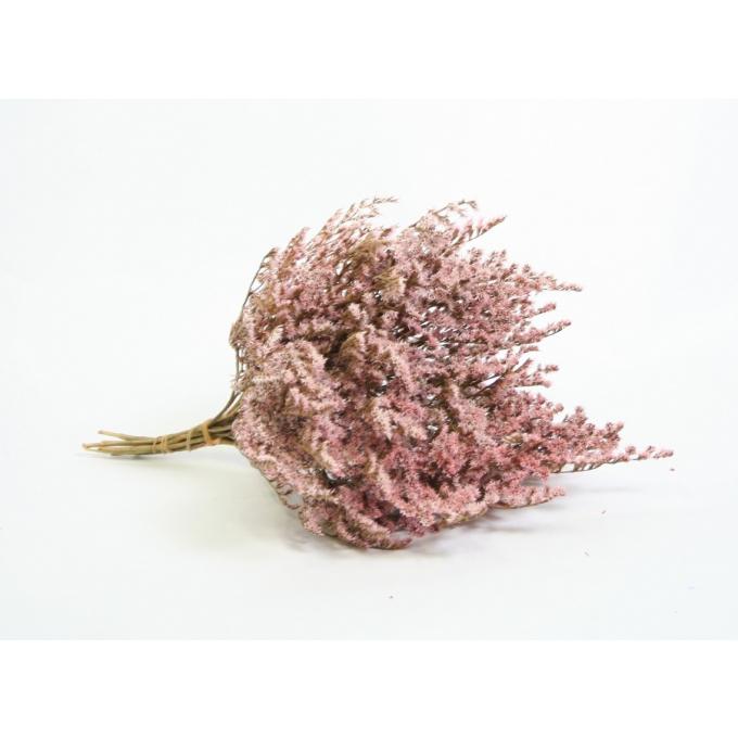 Statice Tatarica light pink dried