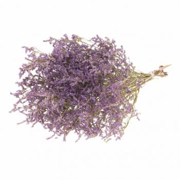 Statice Tatarica purple dried