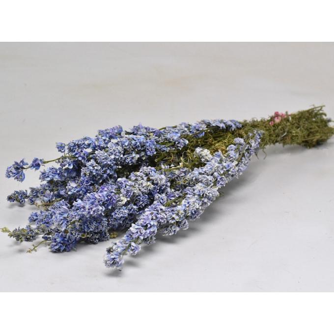 Dried Delphinium light blue